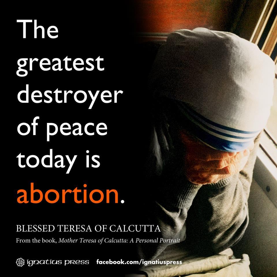Mother Teresa Quotes About Abortion: 7 Kutipan Katolik Dari Ibu Teresa